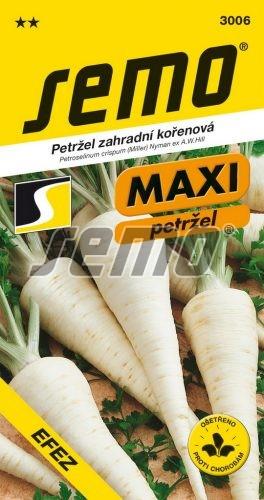 HOBBY, Zelenina - Petržel zahradní kořenová Efez, 3006 (Petroselinum cripsum)
