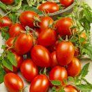 HOBBY, Zelenina – Rajče tyčkové Blumko, 3274