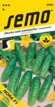 HOBBY, Zelenina - Okurka setá nakládačka Nora F1, 2303 (Cucumis sativus L.)