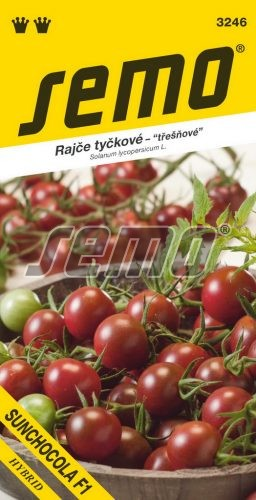 HOBBY, Zelenina - Rajče tyčkové Sunchocola F1, 3246 (Solanum lycopersicum L)