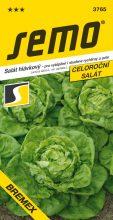 HOBBY, Zelenina - Salát hlávkový Bremex, 3765 (Lactuca sativa L. var.capitata L.)