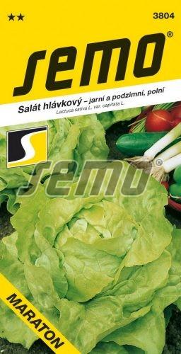 HOBBY, Zelenina - Salát hlávkový Maraton, 3804 (Lactuca sativa L. var.capitata L.)