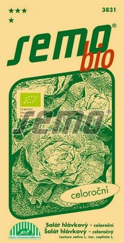 HOBBY, Zelenina - Salát hlávkový Merkurion, 3831b (Lactuca sativa L. var.capitata L.)