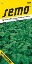 HOBBY, Zelenina - Špenát setý Winterriesen, 3904 (Spinacia oleracea L.)