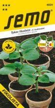 HOBBY, Zelenina - Tykev k roubování okurek Fíkolistá, 4031 (Cucurbita ficifolia C. Bouché)