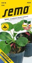 HOBBY, Zelenina - Tykev k roubování okurek i melounů Sprinter F1, 4034 (Cucurbita maxima × cucurbita moschata)