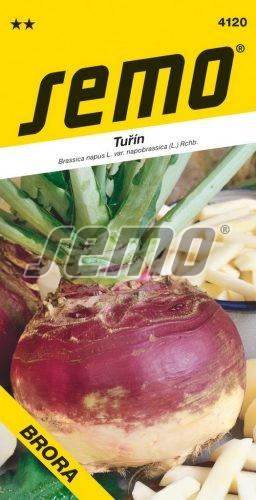 HOBBY, Zelenina - Tuřín Brora, 4120 (Brassica napus var. napobrassica)