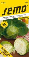 HOBBY, Zelenina - Zelí hlávkové Minica F1, 4207 (Brassica oleracea L. convar.capitata (L.) Alef. var. alba DC.)