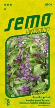 HOBBY, Bylinky - Bazalka pravá Cinamonette, 5904 (Ocimum basilicum L.)