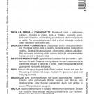 HOBBY, Bylinky – Bazalka pravá Cinamonette, 5904