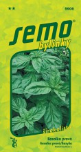 HOBBY, Bylinky - Bazalka pravá Dark Green, 5906 (Ocimum basilicum L.)