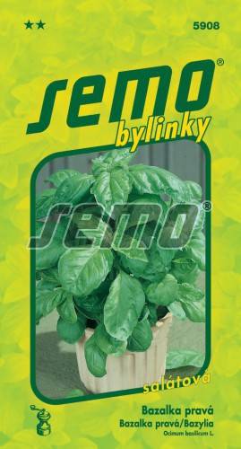 HOBBY, Bylinky - Bazalka pravá Lettuce Leaf, 5908 (Ocimum basilicum L.)