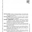HOBBY, Bylinky – Bazalka pravá Lettuce Leaf, 5908