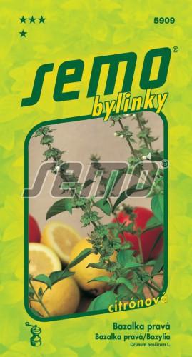 HOBBY, Bylinky - Bazalka pravá Lime, 5909 (Ocimum basilicum L.)