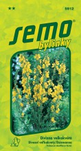 HOBBY, Bylinky - Divizna velkokvětá Zlata, 5912 (Verbascum densiflorum Bertol.)