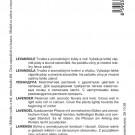 HOBBY, Bylinky – Levandule lékařská, 5928