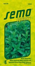 HOBBY, Bylinky - Máta klasnatá, 5936 (Mentha spicata)