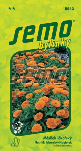 HOBBY, Bylinky - Měsíček lékařský, 5942 (Calendula officinalis L.)