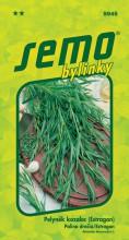 HOBBY, Bylinky - Pelyněk kozalec, 5945 (Artemisia dracunculus L.)