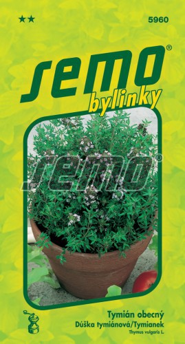 HOBBY, Bylinky - Tymián obecný, 5960 (Thymus vulgaris L.)