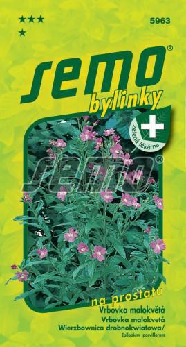 HOBBY, Bylinky - Vrbovka malokvětá, 5963 (Epilobium parviflorum)