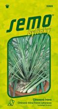 HOBBY, Bylinky - Citronová tráva, 5969 (Cymbopogon citratus)