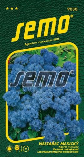 HOBBY, Květiny letničky - Nestařec mexický Tetra Blue Mink, 9030 (Ageratum mexicanum SIMS)
