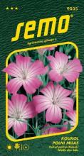 HOBBY, Květiny letničky - Koukol polní Milas, 9035 (Agrostema githago)