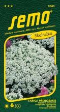 HOBBY, Květiny letničky - Tařice přímořská Corbeille d´argent, 9040 (Lobularia maritima (syn. Alyssum maritimum))