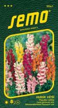 HOBBY, Květiny letničky - Hledík větší Maximum, 9061 (Antirrhinum majus)