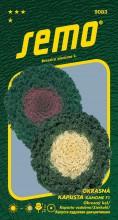 HOBBY, Květiny letničky - Kapusta okrasná Kamome F1 Mix, 9083 (Brassica oleracea)