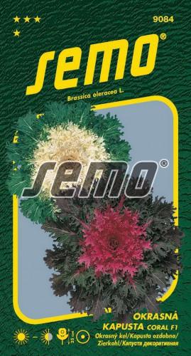 HOBBY, Květiny letničky - Kapusta okrasná Coral F1 Mix, 9084 (Brassica oleracea)