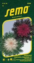 HOBBY, Květiny letničky - Kapusta okrasná Peacock F1 Mix, 9086 (Brassica oleracea)