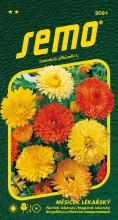 HOBBY, Květiny letničky - Měsíček lékařský Pacific Beauty směs, 9091 (Calendula officinalis)