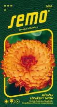 HOBBY, Květiny letničky - Měsíček lékařský Neon, 9092 (Calendula officinalis)