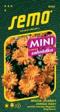 HOBBY, Květiny letničky - Měsíček lékařský Orange Daisy, 9093 (Calendula officinalis)