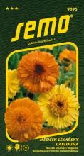 HOBBY, Květiny letničky - Měsíček lékařský Cablouna Mix, 9095 (Calendula officinalis)