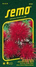 HOBBY, Květiny letničky - Astra čínská Electric červená, 9101 (Callistephus chinensis)