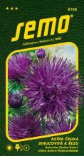 HOBBY, Květiny letničky - Astra čínská Electric modrá, 9102 (Callistephus chinensis)