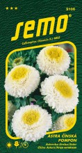 HOBBY, Květiny letničky - Astra čínská Pompon White and Yellow, 9106 (Callistephus chinensis)