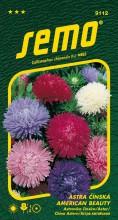 HOBBY, Květiny letničky - Astra čínská American Beauty směs, 9112 (Callistephus chinensis)