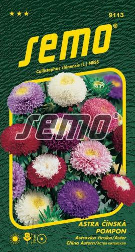 HOBBY, Květiny letničky - Astra čínská Pompon směs, 9113 (Callistephus chinensis)