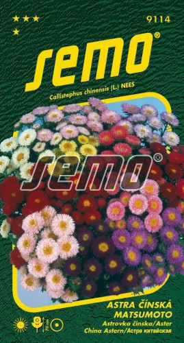 HOBBY, Květiny letničky - Astra čínská Matsumoto směs, 9114 (Callistephus chinensis)
