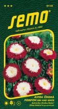HOBBY, Květiny letničky - Astra čínská Pompon Red and White, 9116 (Callistephus chinensis)