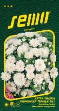 HOBBY, Květiny letničky - Astra čínská Průhonický trpaslík bílý, 9119 (Callistephus chinensis)