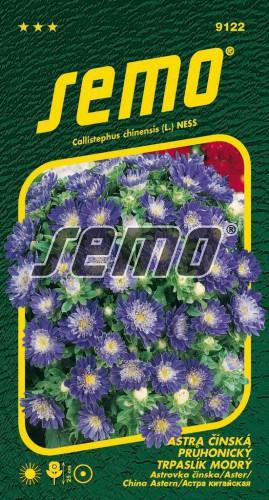 HOBBY, Květiny letničky - Astra čínská Průhonický trpaslík modrý, 9122 (Callistephus chinensis)
