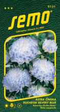 HOBBY, Květiny letničky - Astra čínská Duchesse Silvery Blue, 9131 (Callistephus chinensis)
