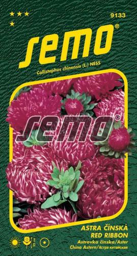 HOBBY, Květiny letničky - Astra čínská Red Ribbon, 9133 (Callistephus chinensis)