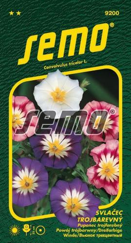 HOBBY, Květiny letničky - Svlačec trojbarevný směs, 9200 (Convolvulus tricolor)