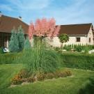 HOBBY, Květiny trvalky – Kortadérie (pampová tráva) Pink and White, 9202